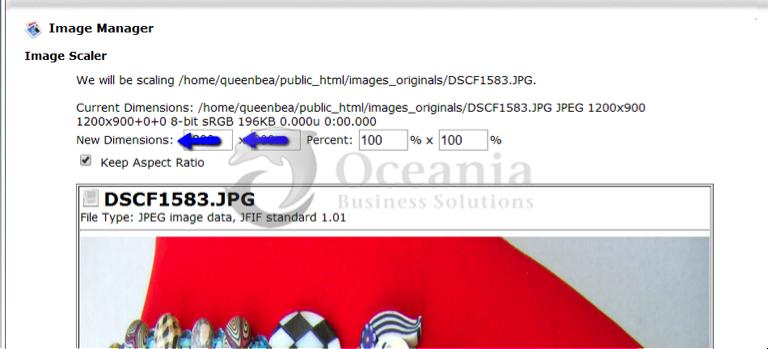 Image Manager Fig 6